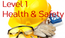 Health and Safety Level one